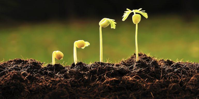 Javni poziv za podnošenje zahtjeva za dodjelu subvencija za poticanje razvitka poljoprivrede u 2016. godini