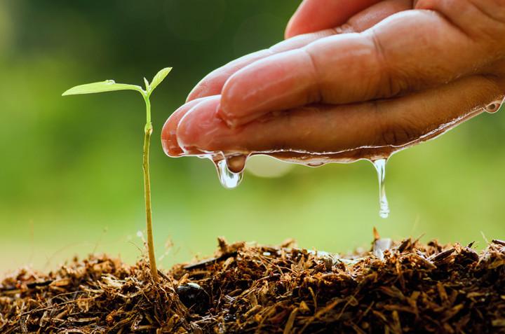 Pregled dodjeljenih potpora u poljoprivredi po Javnom pozivu za dodjelu potpora za 2017. godinu