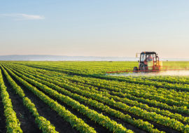 Poziv na javni uvid u prijedloga Programa raspolaganja poljoprivrednim zemljištem u vlasništvu Republike Hrvatske za Grad Knin